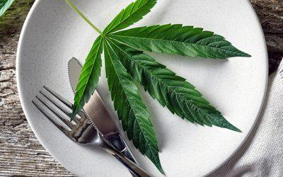 Kochen mit Cannabis