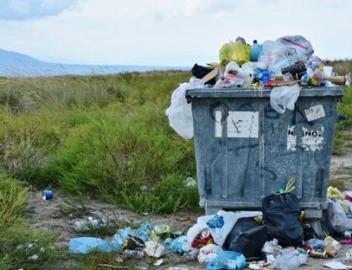 Plastik aus Hanf – biologisch abbaubares Hanfplastik als Lösung für ein globales Problem?