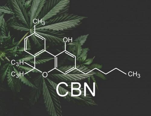 Was ist CBN (dieses Cannabinoid könnte die nächste große Sache werden)