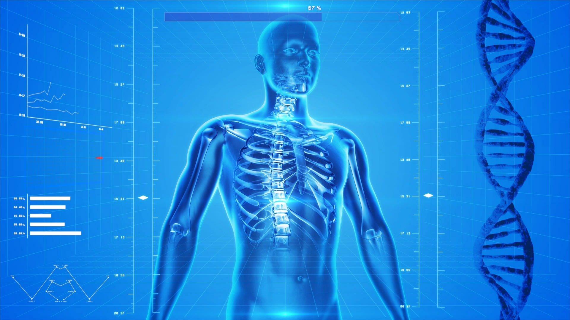 Wie lange bleibt CBD in Ihrem Körper?