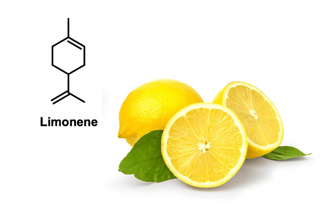 Terpen-Profil Limonene